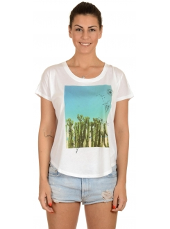 CONVERSE Cactus Photo Sccop Tee Men