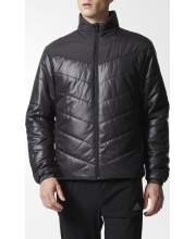 ADIDAS JAKNA Cytins Padded Jacket Men